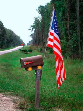 American Flag on Rural Mailbox, North Florida by Pat Canova