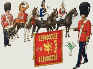 Welsh Regiments by Pat Nicolle