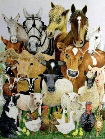Animal Allsorts by Pat Scott