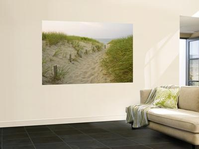 https://imgc.allpostersimages.com/img/posters/path-at-head-of-the-meadow-beach-cape-cod-national-seashore-massachusetts-usa_u-L-PFGJ2O0.jpg?p=0
