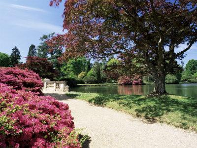 https://imgc.allpostersimages.com/img/posters/path-on-bank-of-ten-foot-pond-sheffield-park-garden-east-sussex-england-united-kingdom_u-L-P1TH1X0.jpg?p=0