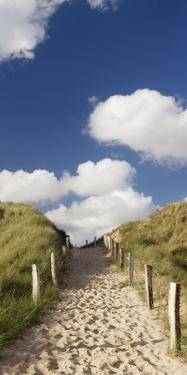Path Through a Dune, Sylt, Schleswig-Holstein, Germany