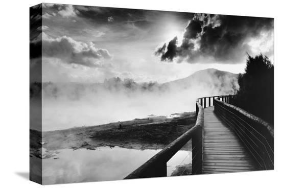 Path to Volcao, Rotorua, New Zealand--Stretched Canvas Print