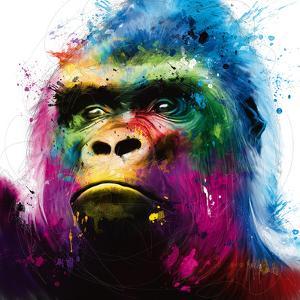 Gorilla by Patrice Murciano