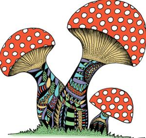 Mushrooms by Patricia Pino