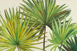 Arte Verde II by Patricia Pinto