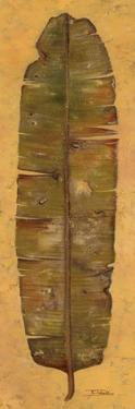 Banana Leaf II by Patricia Pinto