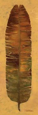 Banana Leaf III by Patricia Pinto