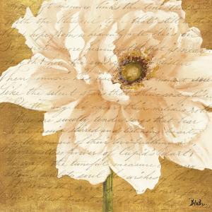 Beautiful Cream Peonies Script II by Patricia Pinto