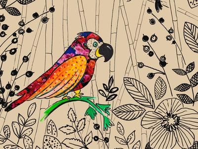 Bird Rainforest