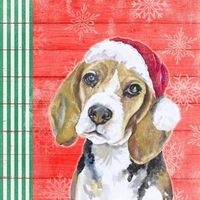 Holiday Puppy I by Patricia Pinto