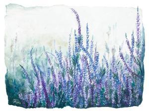 Lavender Floral Garden by Patricia Pinto