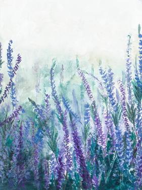 Lavender Garden I by Patricia Pinto