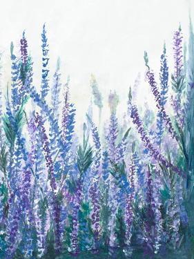 Lavender Garden II by Patricia Pinto