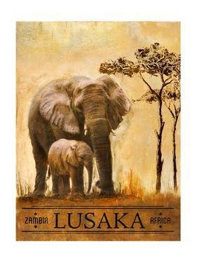 Lusaka by Patricia Pinto
