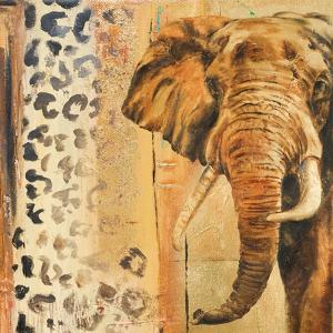New Safari on Gold Square IV by Patricia Pinto