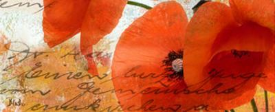 Poppies Composition III by Patricia Pinto
