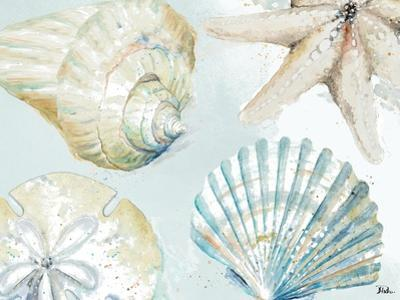Shell Collectors by Patricia Pinto