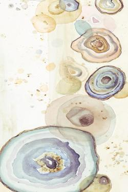 Tall Agates Flying Watercolor by Patricia Pinto