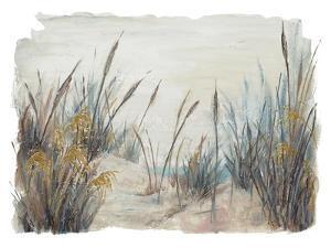 Tall Beach Grass by Patricia Pinto