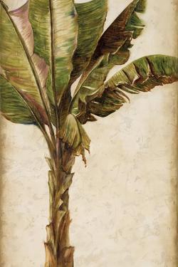 Tropic Banana I by Patricia Pinto