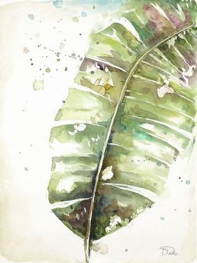 Watercolor Plantain Leaves II by Patricia Pinto
