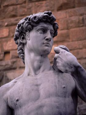 Michelangelo's David, Piazza Della Signoria, Florence, Tuscany, Italy, Europe by Patrick Dieudonne