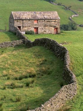 Traditional Barn in Upper Swaledale, Yorkshire Dales National Park, Yorkshire, England, UK by Patrick Dieudonne