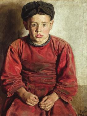 Thady, the Mayo Country Boy, 1912 by Patrick Joseph Tuohy