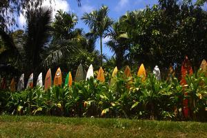 A Colorful Fence Made of Old Surfboards by Patrick McFeeley