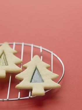 Christmas Cookies on a Cooling Rack by Patrick Norman