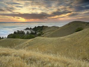 Fog Bank over San Francisco Bay Viewed from Mt. Tamalpais, California, USA by Patrick Smith