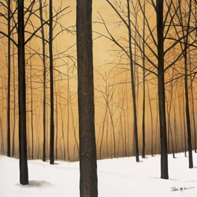 Winter Warmth by Patrick St. Germain
