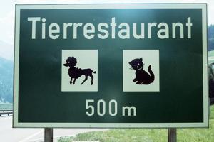 Pet Restaurant Ahead by Paul Almasy