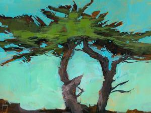 Cypresses by Paul Bailey