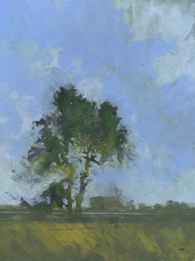 Sandlings Dawn by Paul Bailey