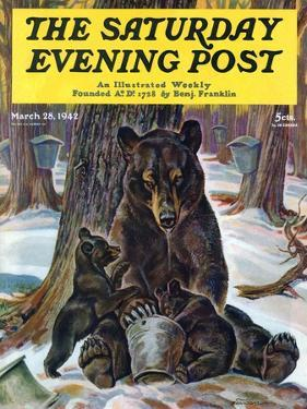 """""""Bears Eating Maple Syrup,"""" Saturday Evening Post Cover, March 28, 1942 by Paul Bransom"""