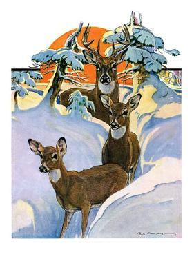 """Deer in Snow,""February 7, 1931 by Paul Bransom"