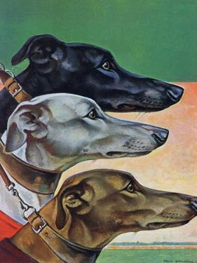 """""""Greyhounds,"""" March 29, 1941 by Paul Bransom"""