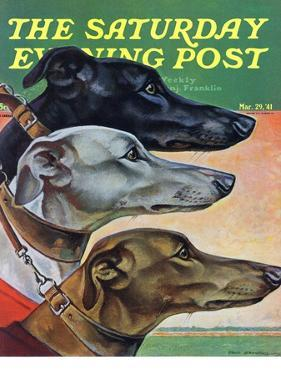 """""""Greyhounds,"""" Saturday Evening Post Cover, March 29, 1941 by Paul Bransom"""