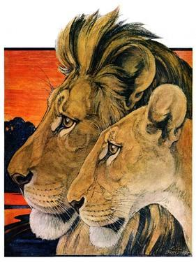 """Lion Pair,""April 27, 1929 by Paul Bransom"