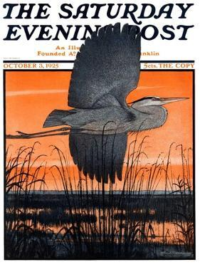 """Marsh Bird,"" Saturday Evening Post Cover, October 3, 1925 by Paul Bransom"