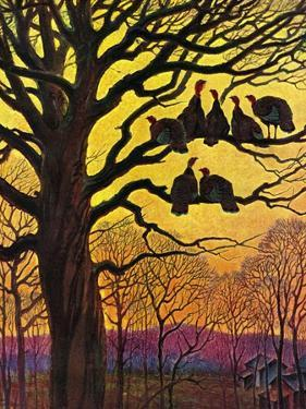 """Wild Turkeys Roosting,""November 1, 1938 by Paul Bransom"