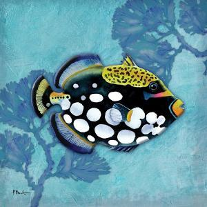 Azure Tropical Fish III by Paul Brent