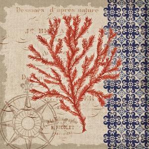 Burlap Coral II by Paul Brent