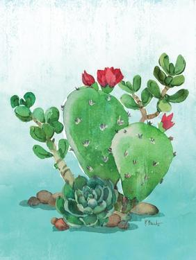 Cactus IV by Paul Brent