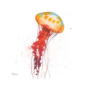 Deep Sea Jellies II by Paul Brent