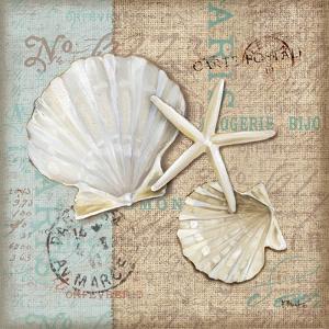 Linen Shells I by Paul Brent