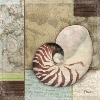 Santa Rosa Shell II by Paul Brent