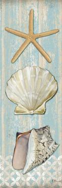 Spa Shells Vertical II by Paul Brent